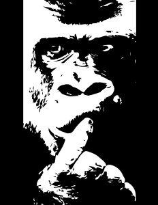 Mono pensante blanco y negro