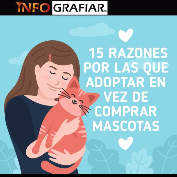 15 razones por las que adoptar en vez de comprar mascotas