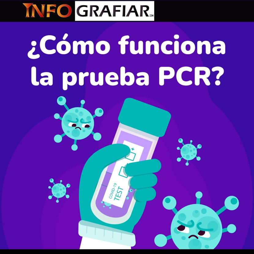 Así funciona la prueba PCR, la foto diagnóstica del coronavirus