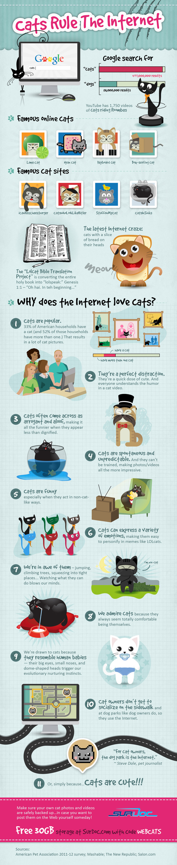 Cats Rule the Internet infographic