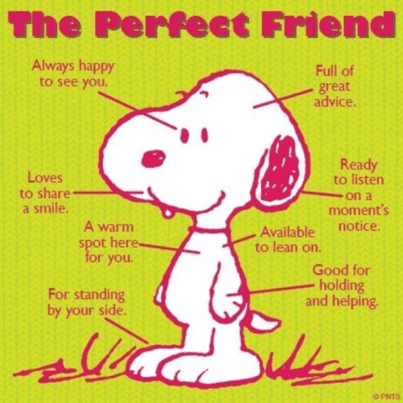 The Perfect Friends according to Peanuts