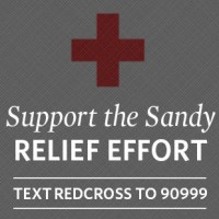 Charity Showcase: Great Groups to Donate to If You Can