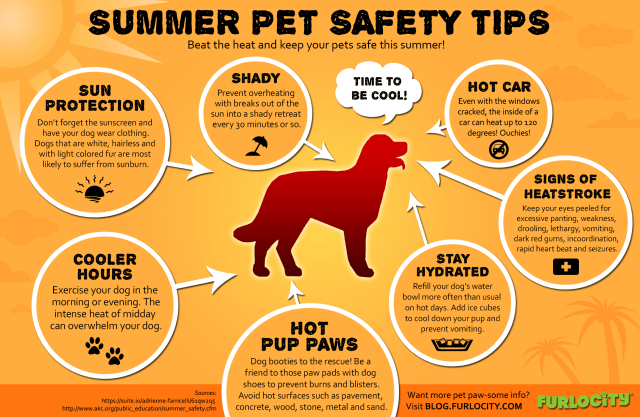furlocity-summer-pet-safety-tips