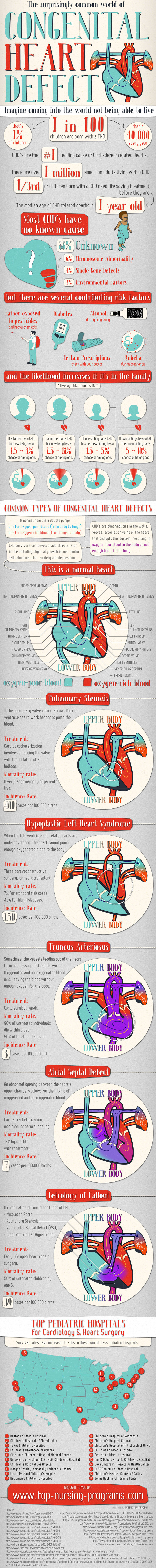 the-surprisingly-common-world-of-heart-defects_525f9974be71f