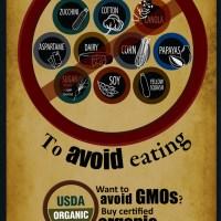Top Ten Gmo Foods To Avoid