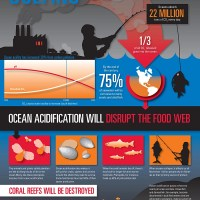 Oceans Carbon Pollution