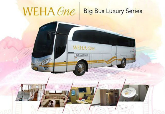 sewa bus premium luxury