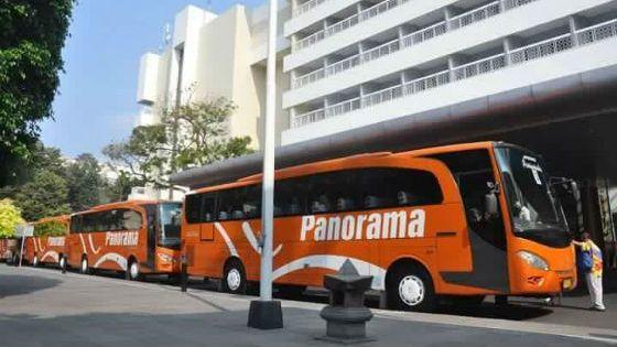 sewa bus panorama