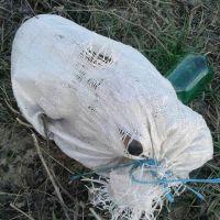 """DB-10-TCA: """"Un câine într-un sac, legat la gură, la intrare în satul Caprioru. Ruşine!"""""""