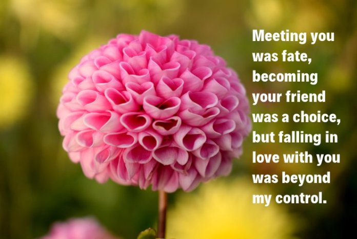 Meeting you was fate Attractive Picture Love Quotes