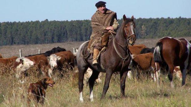 Hoy se celebra el Día del Trabajador Rural en Argentina