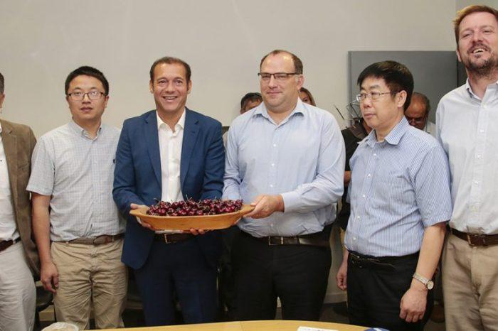 Desde Neuquén, se exportan 160 toneladas de cerezas a China