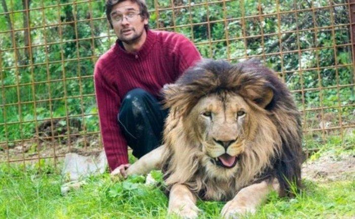 Murió tras ser atacado por un león al que criaba en su casa como mascota