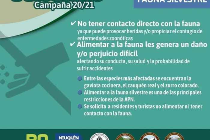 """Campaña de prevención """"Solo Huellas 20/21""""No alimentar a la fauna silvestre"""