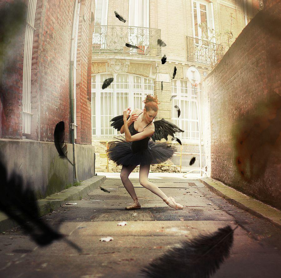 the-black-swan-parade