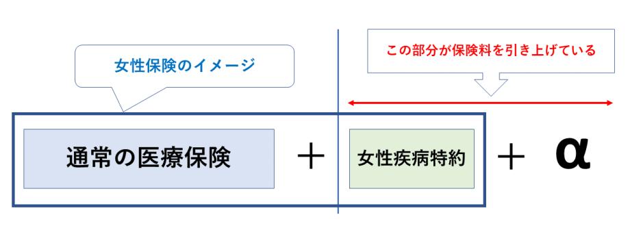 女性保険のイメージ図