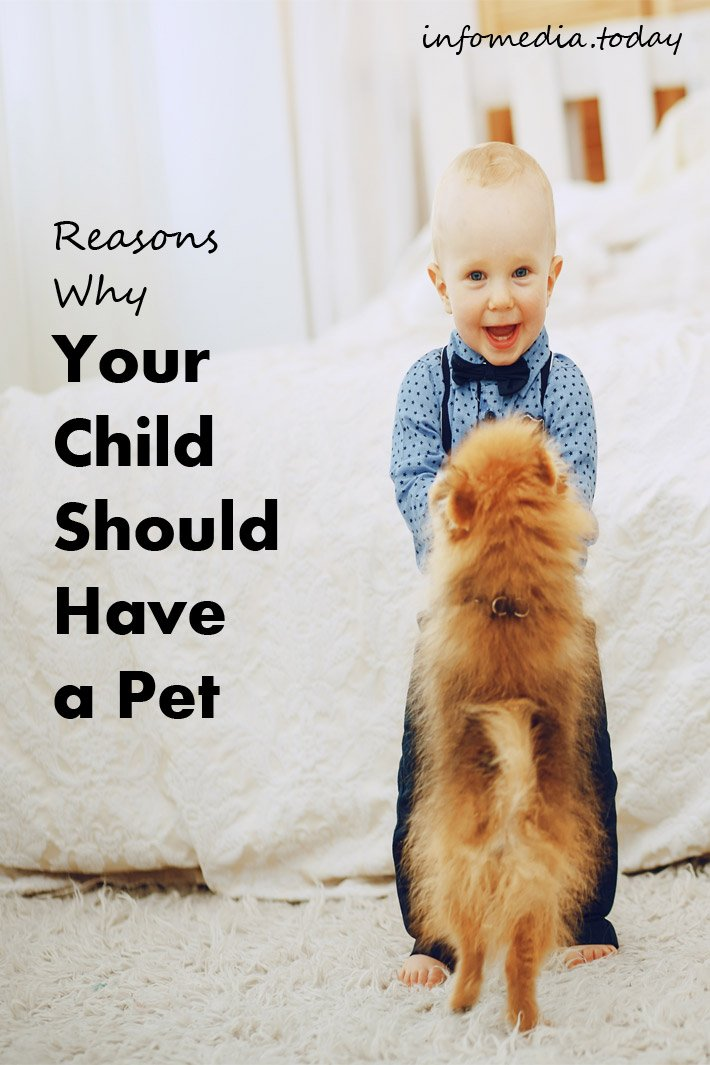 Reasons Why Your Child Should Have a Pet