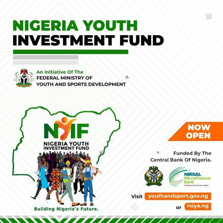Nigeria Youth Investmemnt Fund Support