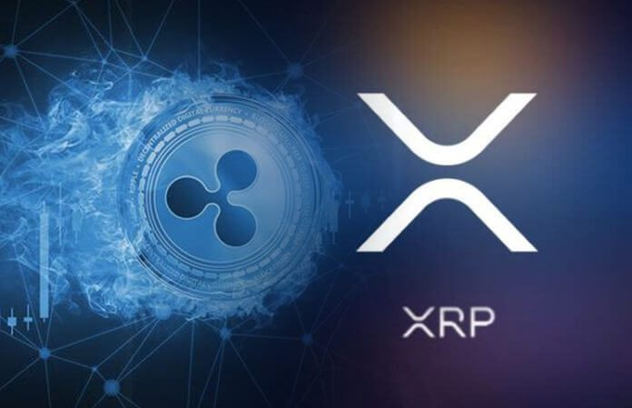 How To Make Profit From The Fall Of Ripple (XRP)
