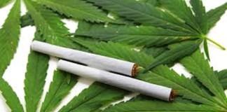 Shocking!!! Fashola Smokes Weed- Says Prophet Evans