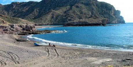 La Semarnat anunció una campaña de limpieza para las playas sonorenses.