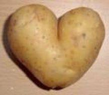 Hoe Gezond Vermageren, groente aardappel, calorieën, dieet - aardappel wok met kalkoen recept.