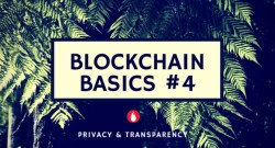 Leveraging the power of blockchain – Transparency & Privacy