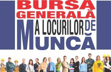 Peste 1200 de locuri de munca, disponibile la Bursa generala a locurilor de munca, din 7 aprilie