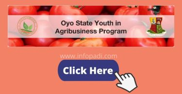 Oyo State Youth in Agribusiness