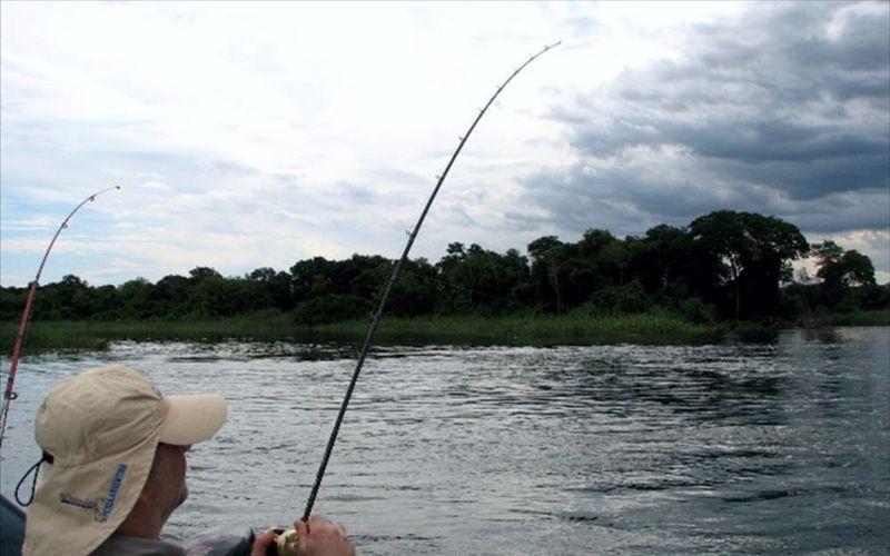 Desde 1 de enero gestión digital para compra de licencias de pesca