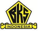 Pelayaran Borneo Karya Swadiri, PT