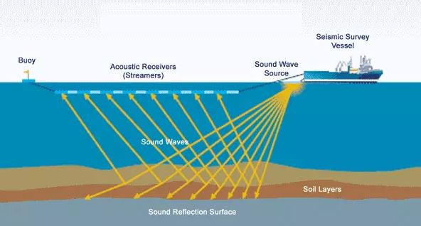 Offshore - Seismic