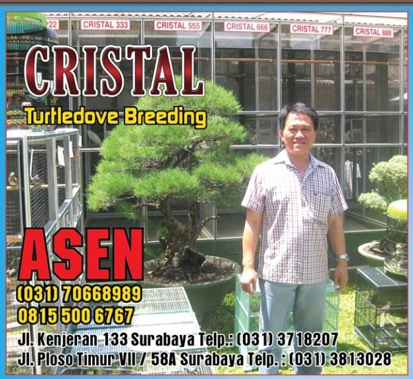 cristal birdfarm surabaya