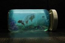 Rozeznáte v akváriu nemoc zvanou infekční vodnatelnost?