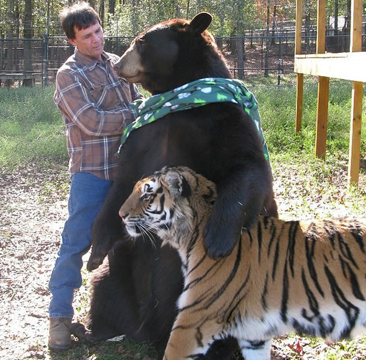 3 Most Deadly Animals Become Best Friends