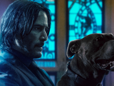 Download John Wick: Chapter 3 FZMovies.Net Movies