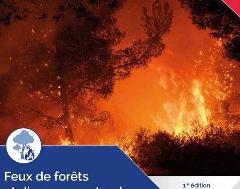GDO » feux de forêts et d'espaces naturels»