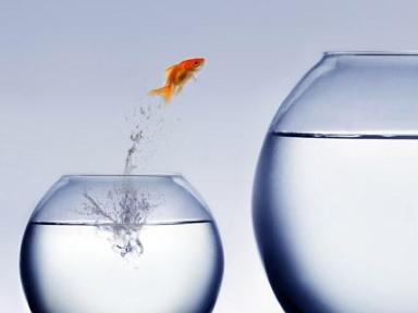 3 pilares do empreendedorismo