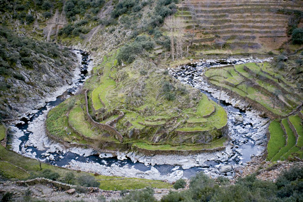 El cultivo en bancales se ha convertido en un pequeño arte en Las Hurdes. Foto: VivirExtremadura.es