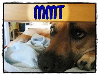 MMT - Parte I