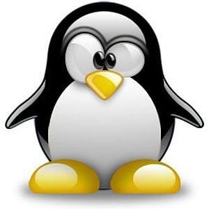 Como experimentar Linux de forma simples e rápida