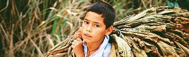 O trabalho infantil na América do Sul