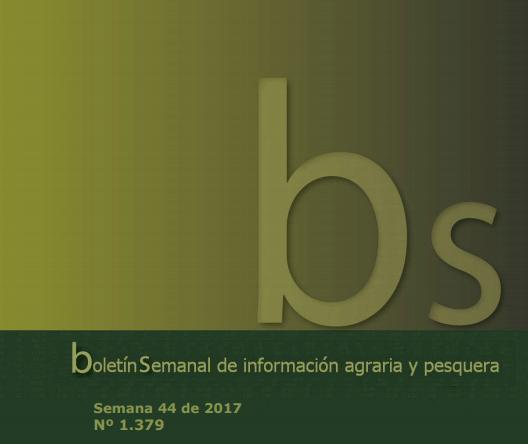 Boletines_Informacion