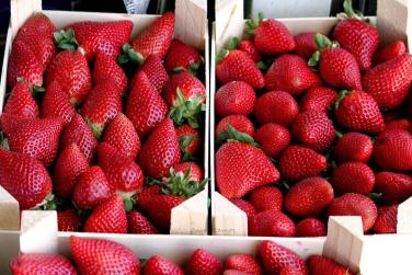 fresas cajaIMG_4159
