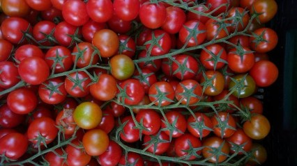 Tomates_racimo