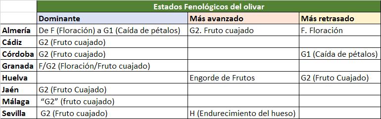 Estado fenológico olivar S24.png