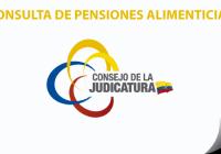 consulta-de-pensiones-alimenticias