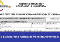 rebaja pension alimenticia