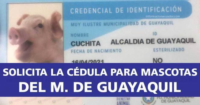 cédula-para-mascotas-online-del-municipio-de-guayaquil