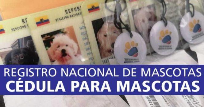cédula-para-mascotas-registro-nacional-de-mascotas-de-ecuador